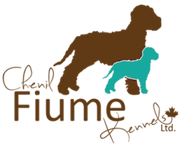 Fiume Kennels Ltd.