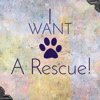 RescueApp